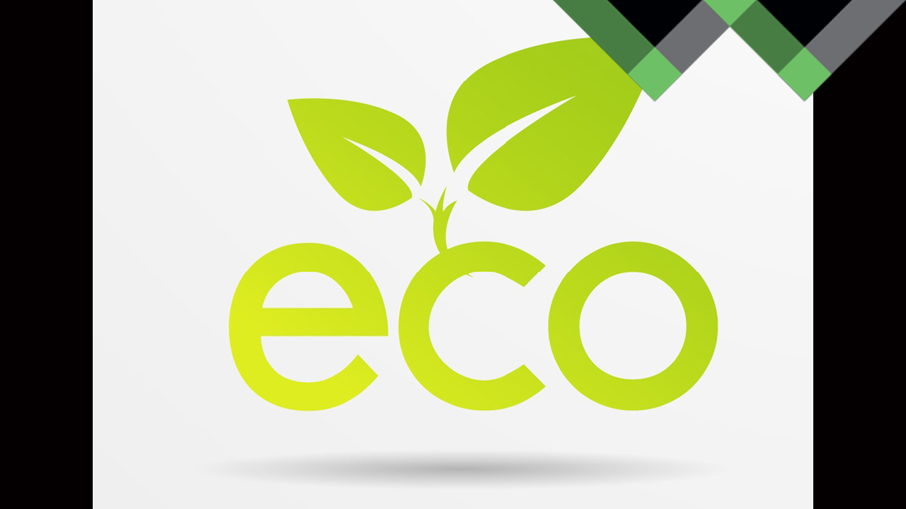 Sustainable and Responsible Companies in Texas