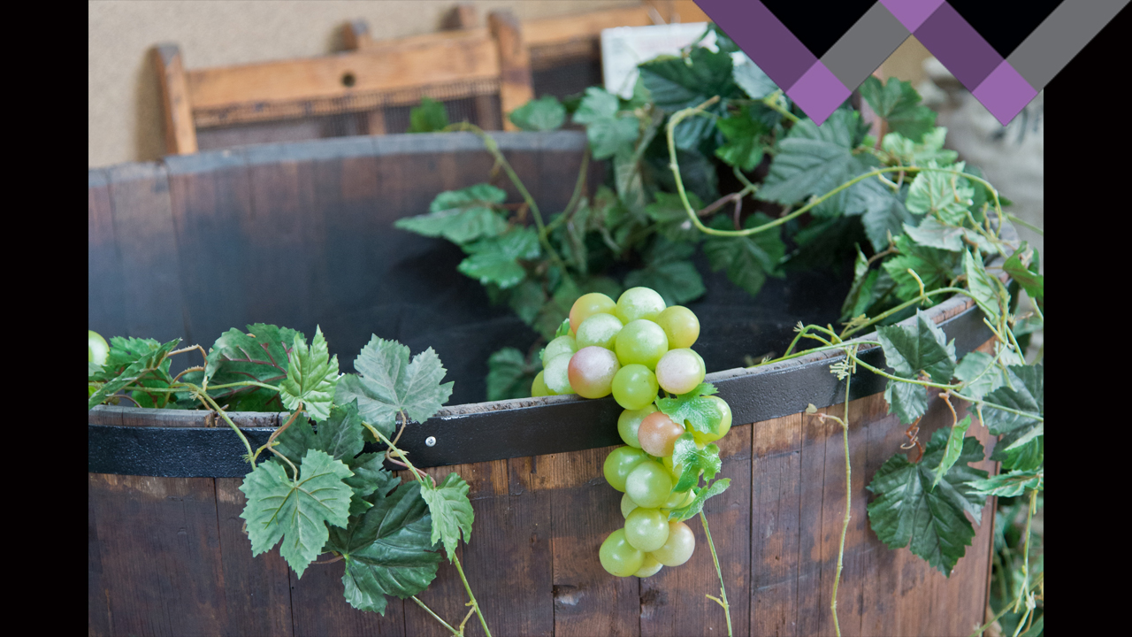 The Big 6 (Part 1: The 3 White Grapes)