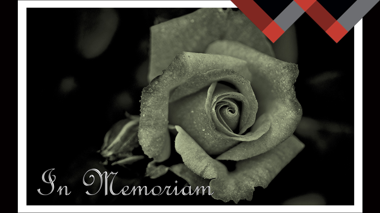 Honoring Your Loved One by Preplanning a Funeral Celebration