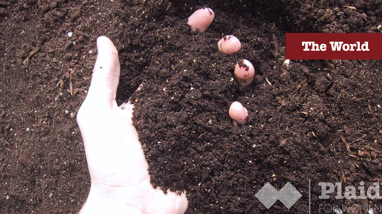 Soil Sister: Back Up at the Crack of Dawn Growing Good Food