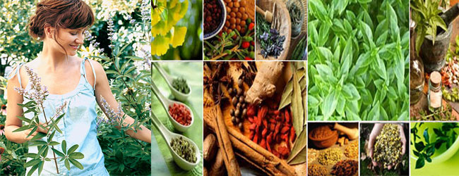 THINKING ABOUT MAKING YOUR OWN HERBAL MEDICINE?