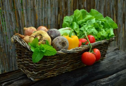 Cure for all Diseases…Nutritious Food