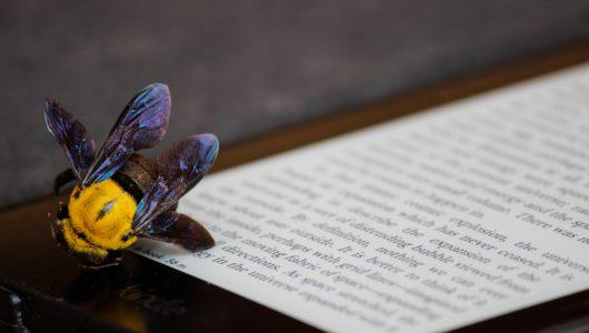 an iridescent bee lands on an ereader