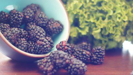 blackberry harvest campaign