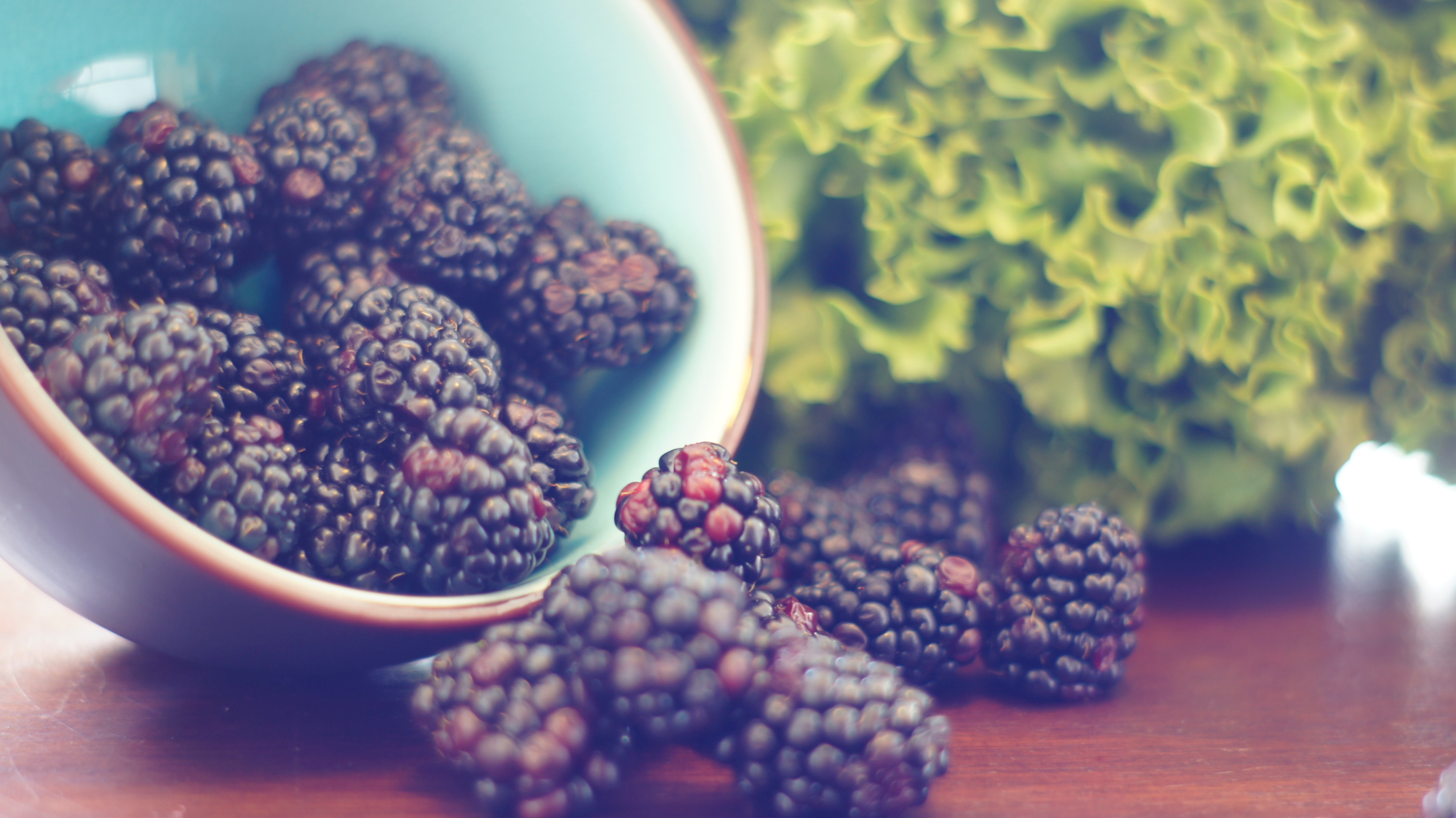 The Blackberry Harvest and Political Decisions