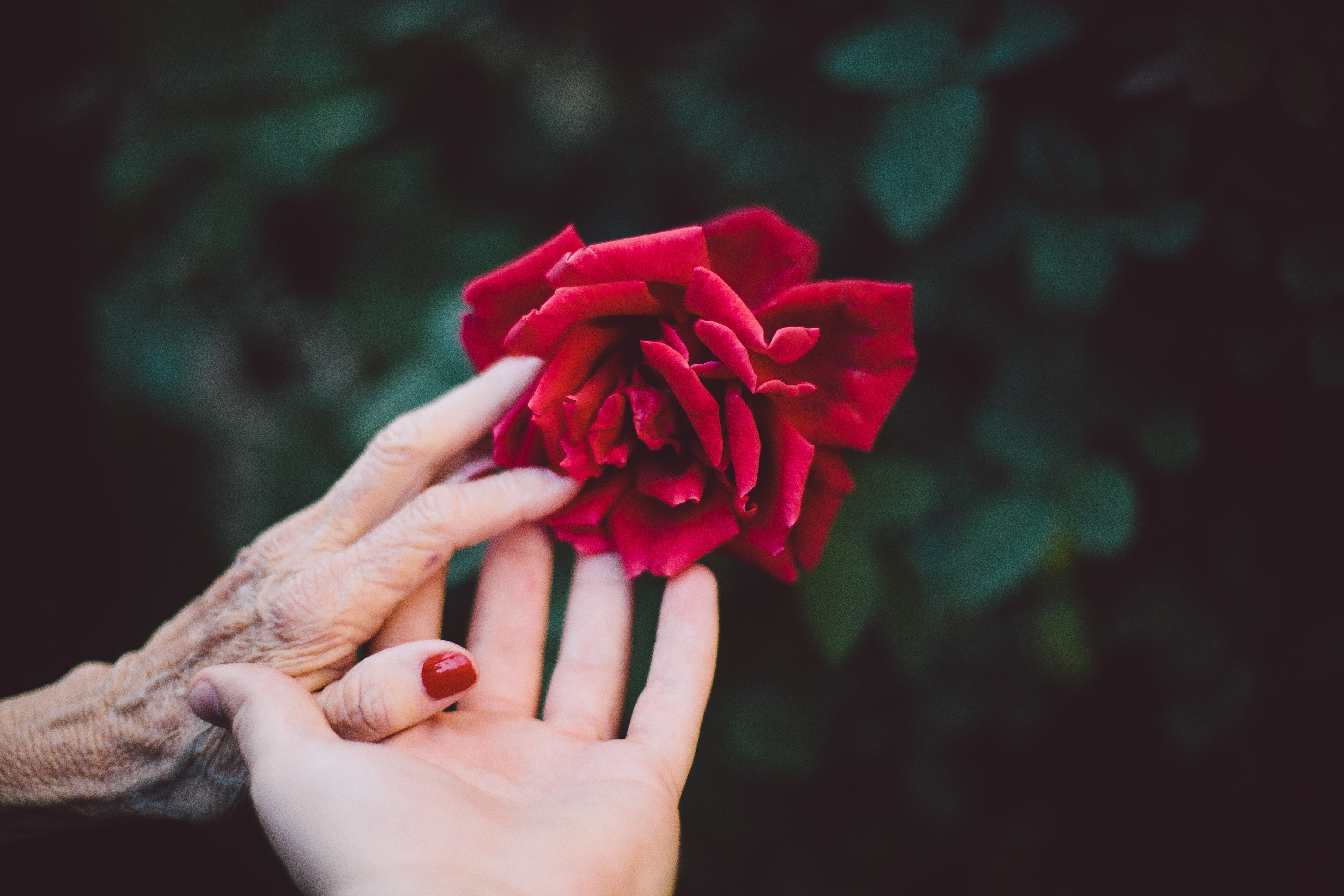 Quality of Life: What Care-giving Really Means