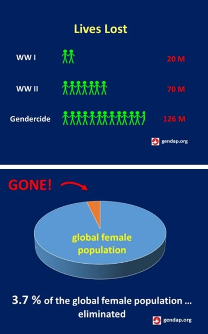 Charts comparing female lives lost to lives lost in WWI & WWII as well as in context of global female population.