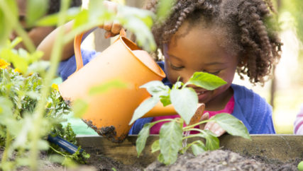 Cute little girl enjoys planting new flowers and vegetable plants.