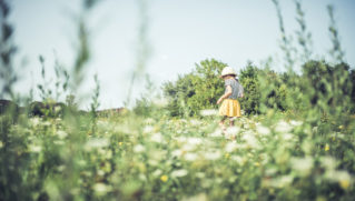 Little girl in a yellow skirt is walking in a field full with wild flowers