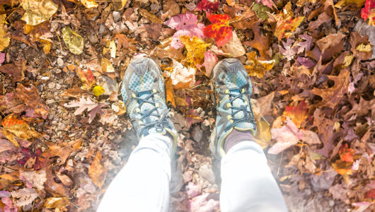 Many fallen autumn brown orange golden leaves on ground with shoes