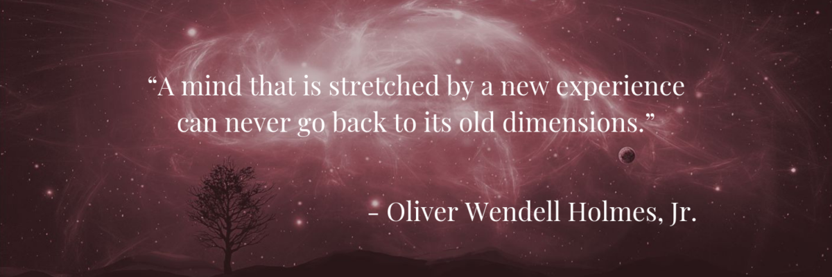 """A mind that is stretched by a new experience can never go back to its old dimensions."" —Oliver Wendell Holmes, Jr."