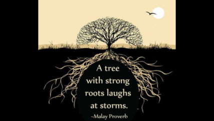 tree with roots and a Malay Proverb: A tree with strong roots laughs at storms.