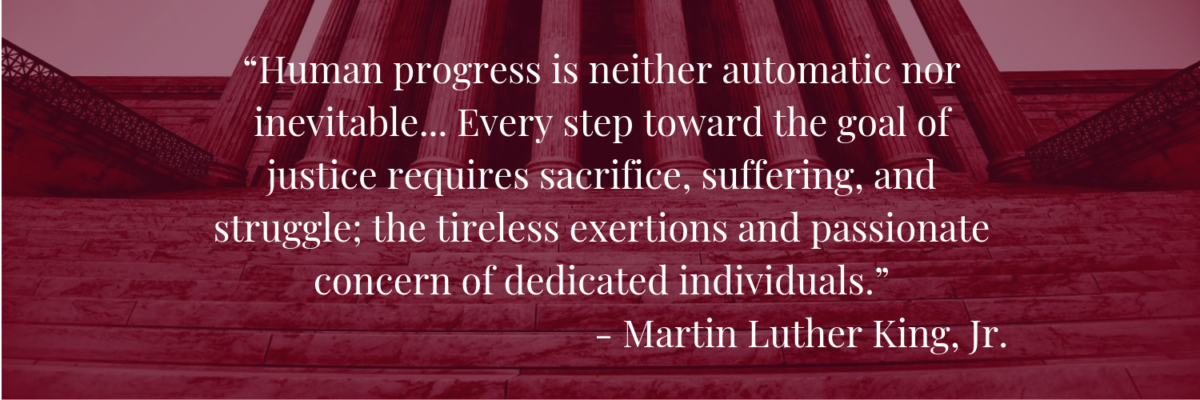 """Human progress is neither automatic nor inevitable... Every step toward the goal of justice requires sacrifice, suffering, and struggle; the tireless exertions and passionate concern of dedicated individuals."" -  Martin Luther King, Jr."