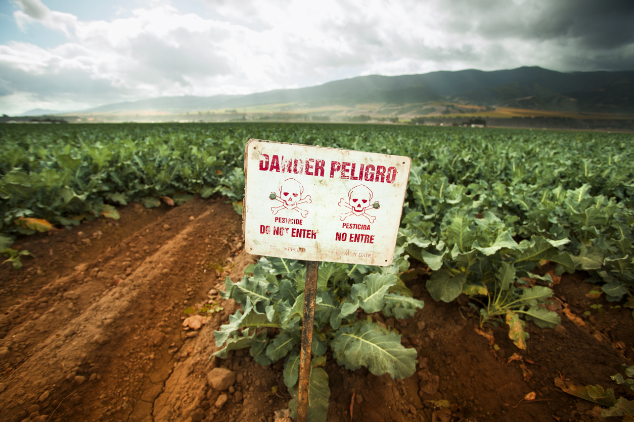 Pesticides in Produce: Should You be Worried?