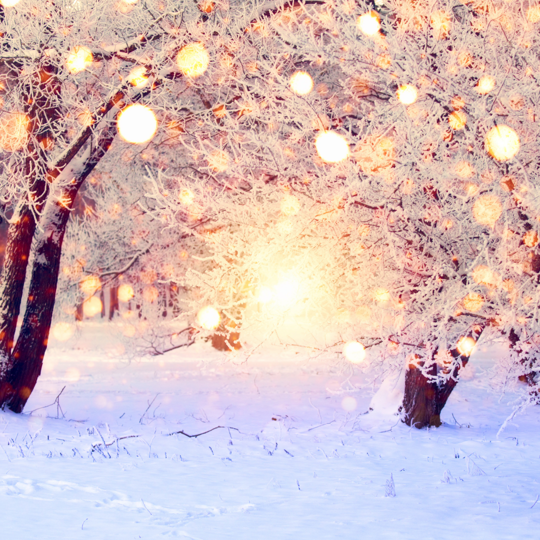 The Sights, Sounds, & Scents of Christmas