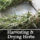 Harvesting, Drying, Preserving and Storing Your Herbs